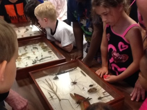 Bugs 20
