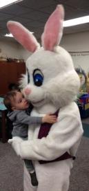 bunny3cr